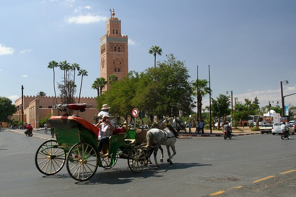 Excursion au dépar de Marrakech